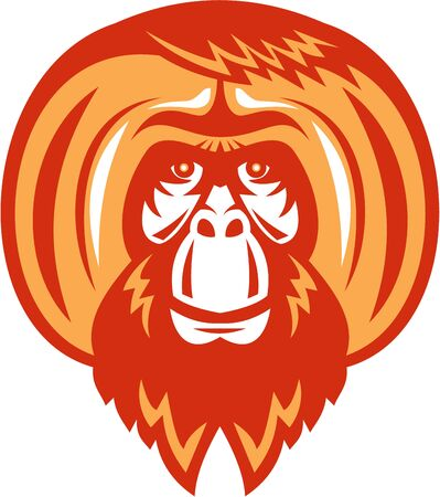 orangutan: Illustration of an orangutan, orang-utan, orangutang or orang-utang an Asian species of extant great apes with beard facial hair viewed from front set on isolated white background done in retro style. Illustration