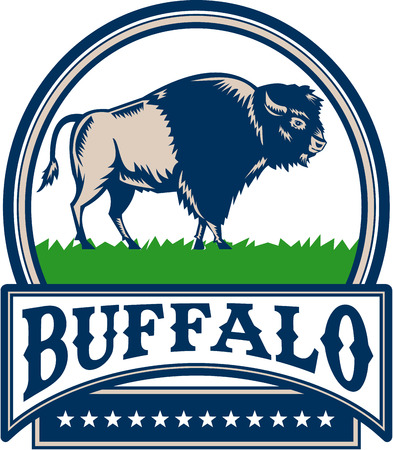 printmaking: Illustration of an american bison buffalo bull viewed from the side set inside circle and the word Buffalo in a banner with stars done in retro woodcut style.