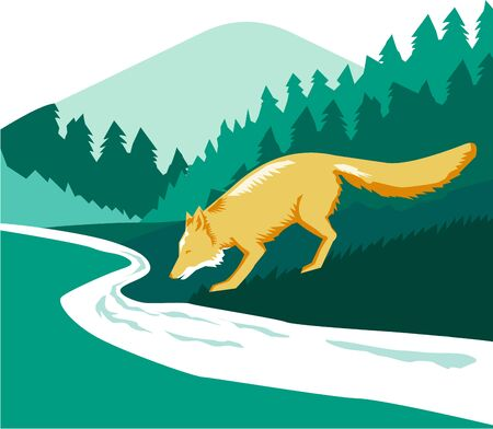 creek: Illustration of a fox drinking from river creek set inside square shape with woods trees forest in the background done in retro style.