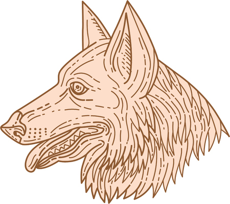german shepherd dog: Mono line style illustration of a german shepherd dog head with tongue out viewed from the side set on isolated white background. Illustration