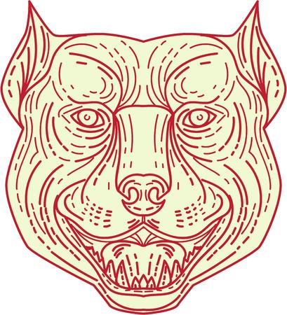 bull mastiff: Mono line style illustration of an angry pitbull dog mongrel head facing front set on isolated white background. Illustration
