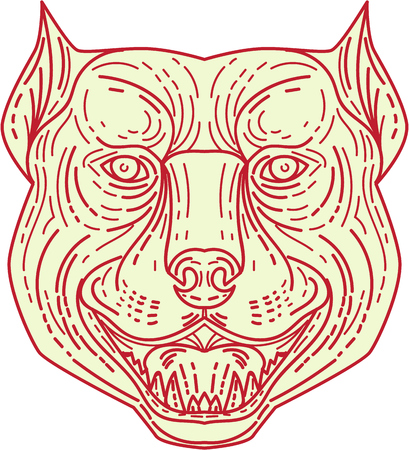 Mono line style illustration of an angry pitbull dog mongrel head facing front set on isolated white background. Illustration