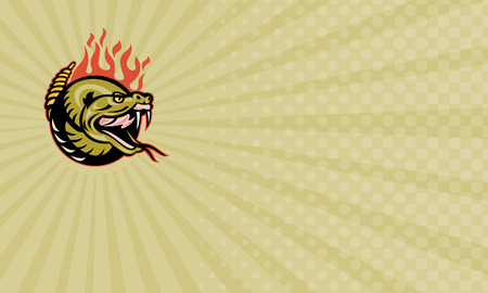 rattle snake: Business card showing Illustration of a rattle snake snake head with flames.   Stock Photo
