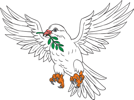 Drawing sketch style illustration of a dove flying with olive leaf in its beak looking to the side set on isolated white background.