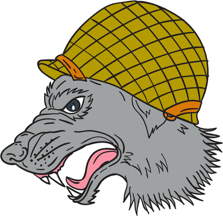 growling: Drawing sketch style illustration of grey wolf head wearing world war two helmet growling viewed from the side set on isolated white background. Illustration