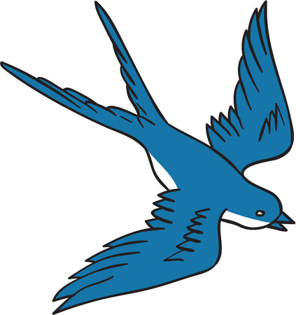 passerine: Drawing sketch style illustration of a swallow, a fast flying passerine bird in the family Hirundinidae, flying down viewed from the side set on isolated white background.