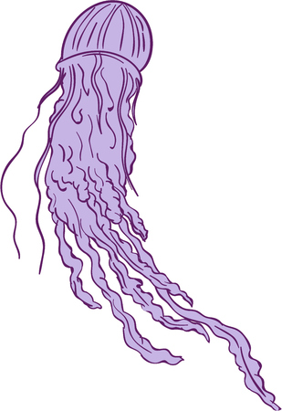 Drawing sketch style illustration of an Australian Box jellyfish (class Cubozoa) or jellies Illustration
