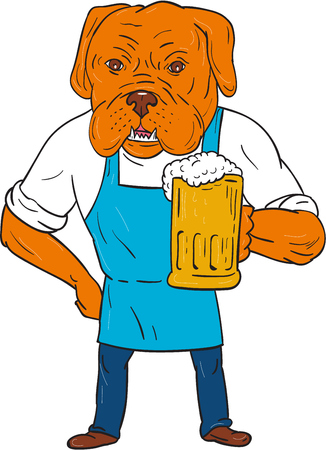 brewer: Illustration of a Dogue de Bordeaux, Bordeaux Mastiff, French Mastiff or Bordeaux dog, a large French Mastiff breed one of the most ancient French dog breeds brewer wearing apron holding beer mug with one hand on hip viewed from front set on isolated whit Illustration