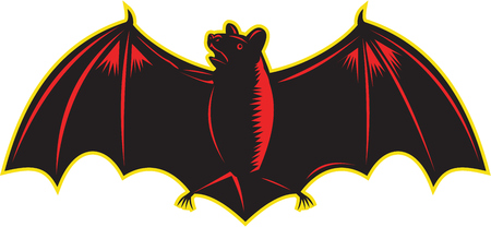 printmaking: Illustration of bat looking up to the side with wings spread out viewed from front set on isolated white background.