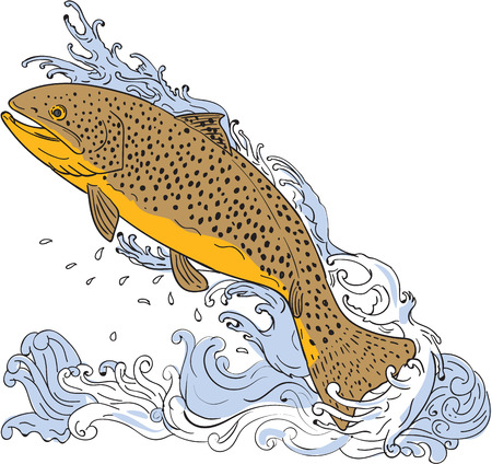 speckled trout: Drawing sketch style illustration of a brown trout fish swimming up on a turbulent water viewed from the side set on isolated white background.