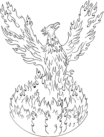 flames background: Drawing sketch style illustration of a phoenix rising up from fiery flames, wings raised for flight done in black and white set on isolated white background.