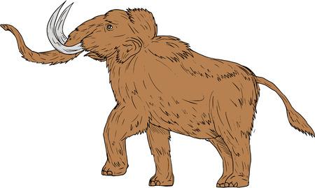 Dessin illustration de style croquis d'un mammouth laineux, Mammuthus primigenius, un éléphant préhistorique qui a vécu au cours de l'époque Pléistocène et l'une des dernières espèces mammouths prancing vu du côté sur fond blanc isolé. Vecteurs