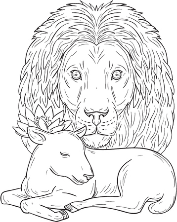 Drawing sketch style illustration of a lion head watching over a sleeping lamb viewed from front set on isolated white background.