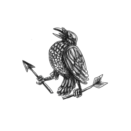 Tattoo style illustration of a crow looking up clutching a broken arrow viewed from the side set on isolated white background.  Banco de Imagens