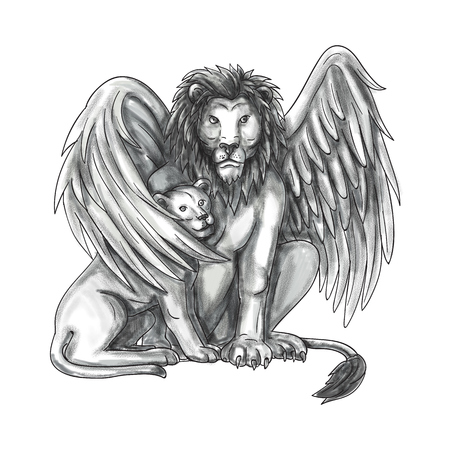 Tattoo style illustration of a winged lion, a mythological creature that resembles a lion with bird-like wings, protecting its cub by putting it under its wing set on isolated white background viewed from front.  Stock Photo