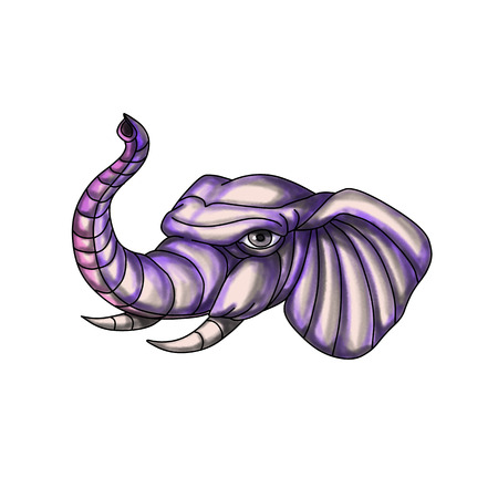 Tattoo style illustration of an elephant head with trunk raised up set on isolated white background. Imagens