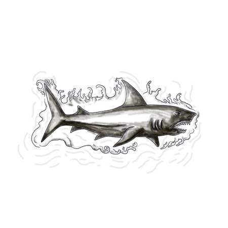 Tattoo style illustration of a shark swimming in water viewed from the side set on isolated white background. Stock Photo