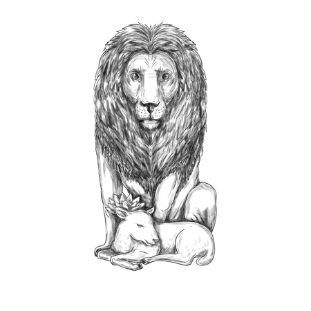 Tattoo style illustration of a lion watching over a sleeping lamb viewed from front set on isolated white background.  Stock Photo