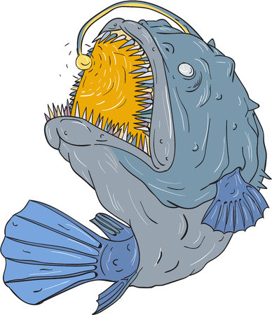 Drawing sketch style illustration of an Anglerfish of teleost order Lophiiformes that are bony fish named for their characteristic mode of predation, which a fleshy growth from fishs head (the esca or illicium) acts as a lure, swooping up viewed from the