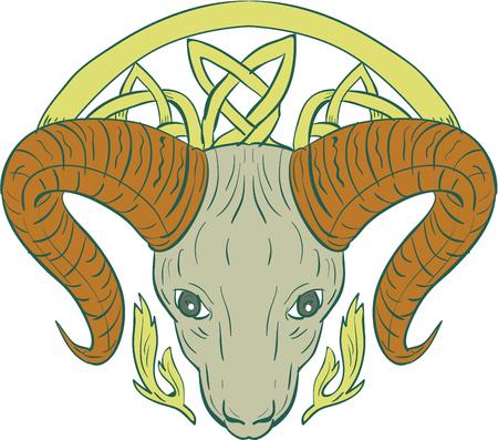 ケルト族の結び目で様式化された ram ビッグホーン山ヤギ頭のイラストでは、Icovellavna、編む作業または分離の背景を白に設定フロントから見た切れ  イラスト・ベクター素材