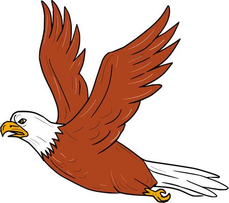 飛んでいる怒っている鷲の図は翼漫画のスタイルで行われる分離の白い背景の設定側から見た羽ばたき。