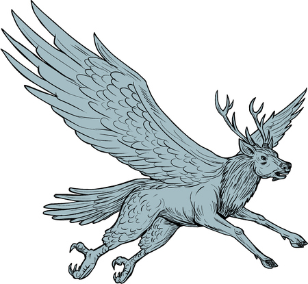 Drawing sketch style illustration of a Peryton, a Medieval European mythical creature with head, forelegs and antlers of a full-grown stag with the wings plumage and hindquarters of a bird flying viewed from the side set on isolated white background. Иллюстрация
