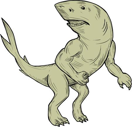 図面スケッチ Nanaue、腕と脚の分離の背景を白に設定フロントから見た側にいるヒューマノイド サメのハワイアンの民間伝承の神話上の生き物のイラストです。 写真素材 - 79814722