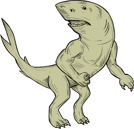 Drawing sketch style illustration of a Nanaue, a mythical creature in Hawaiian Folklore of a humanoid shark with arms and legs looking to the side viewed from front set on isolated white background. Çizim
