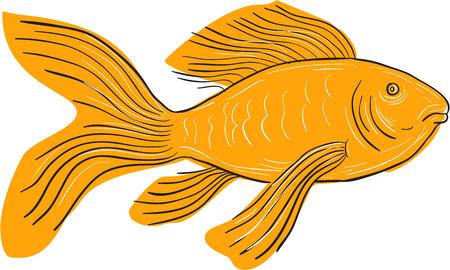 격리 된 흰색 배경에 설정 측면에서 볼 수영 긴 땡 잉 꼬라고도하는 골드 나비 잉어, 스케치 스타일 그림 그리기.
