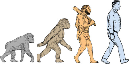 Drawing sketch style illustration showing human evolution from primate ape, homo habilis, homo erectus to modern day human homo sapien walking viewed from the side set on isolated white background. Ilustracja