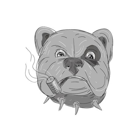 Illustratie van een boze Bulldog met studded kraag en vlek Roken Corn Cob Pipe in de hand getekend Teken en schets stijl op geïsoleerde achtergrond. Stock Illustratie