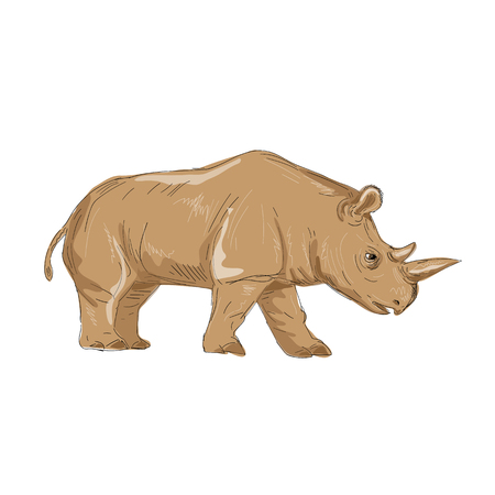 북부 화이트 코뿔소 그림 측면보기 손을 완료 스케치 드로잉 스타일입니다.