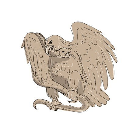 Illustration of a serpent in the clutches of an eagle with its beak on snakes head done in drawing sketch style.