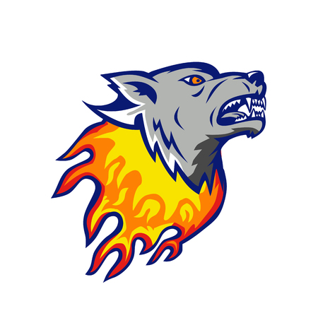 Illustration of an angry flaming wolf head on fire.