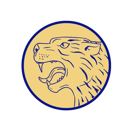 Illustration d & # 39 ; une tête de tigre de canyon Banque d'images - 83920607