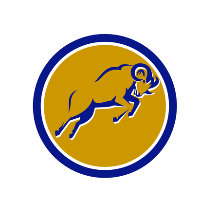 Illustration of a Bighorn Mountain goat jumping.