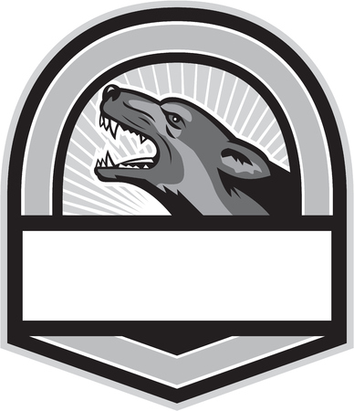 Illustration of an angry german shepherd dog head showing sharp pointed teeth viewed from the side set inside shield crest done in retro style. Illustration