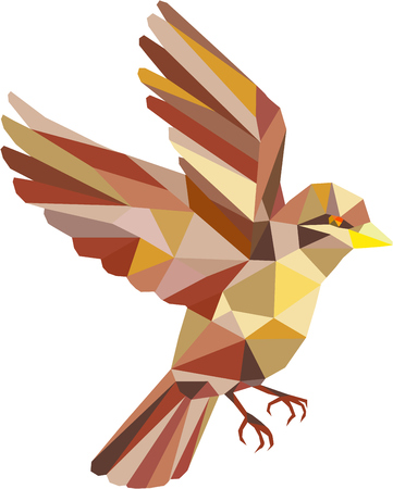 Low polygon style illustration of a sparrow flying viewed from the side set on isolated white background. Ilustração