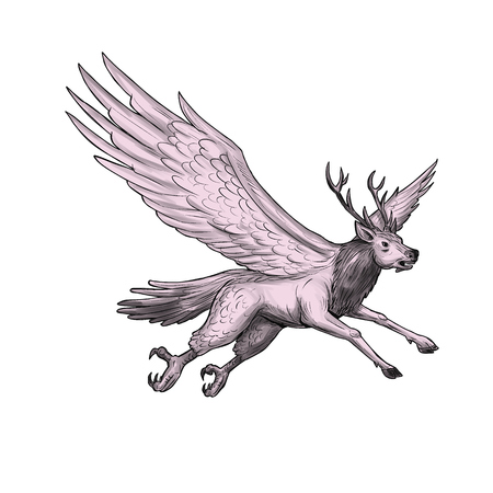 Tattoo style illustration of a Peryton, a Medieval European mythical creature with head, forelegs and antlers of a full-grown stag with the wings plumage and hindquarters of a bird viewed from the side set on isolated white background.