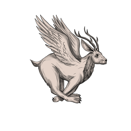 Tattoo style illustration of a Wolpertinger, in Bavarian folklore, a mythical hare with antlers, fangs and wings running viewed from the side set on isolated white background.