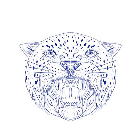 Illustration d'un jaguar en colère, panthère, léopard, chat sauvage, gros chat tête montrant ses crocs vue de devant fait à la main dessiné, croquis style de dessin. Banque d'images - 84713132