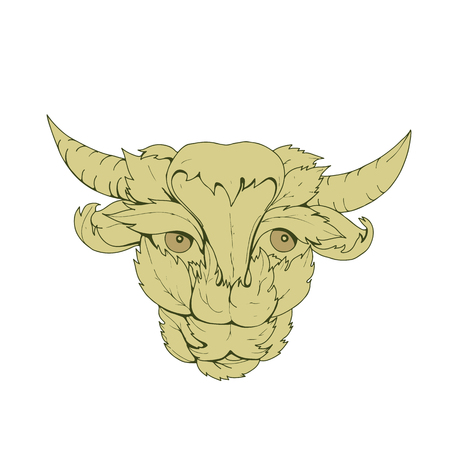 Drawing sketch style illustration of green cow or bull  with head surrounded by or made from leaves viewed from front. Illustration
