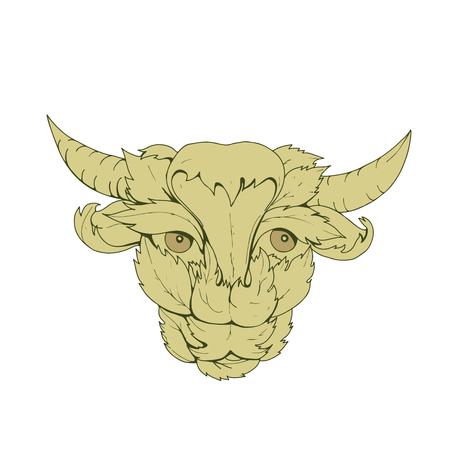 Tekening schets stijl illustratie van groene koe of stier met hoofd omgeven door of gemaakt van bladeren van voren bekeken. Stock Illustratie