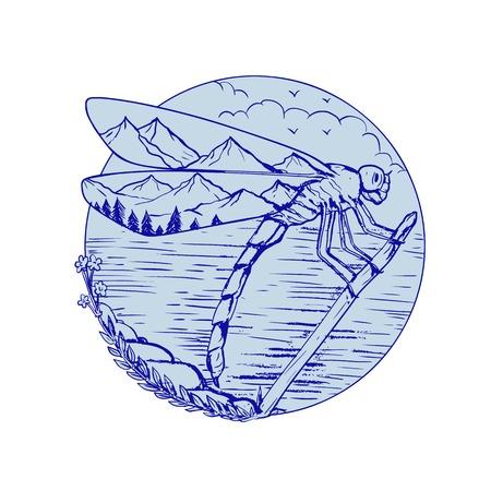 백그라운드에서 호수 바다와 분기 나뭇 가지에 쉬고 날개에 산들과 잠자리의 드로잉 스케치 스타일 그림.