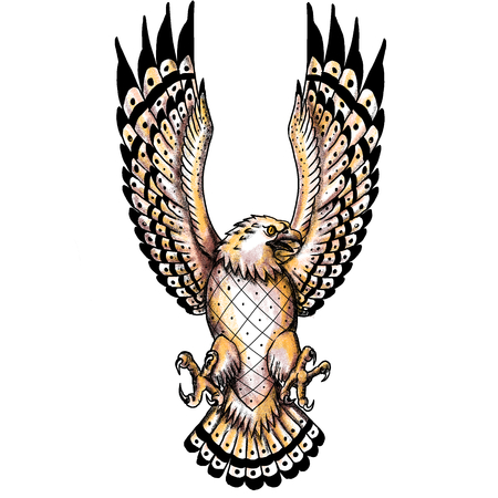 Tattoo style illustration of an osprey, Pandion haliaetus also called fish eagle, sea hawk, river hawk, and fish hawk, a diurnal, fish-eating bird of prey swooping spreading wings viewed from front. Stock Photo