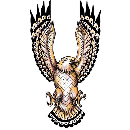Tätowierungsartillustration eines Fischadlers, Pandion haliaetus nannte auch Fischadler, Seefalke, Flussfalke und Fischfalke, ein tagesaktueller, fischfressender Raubvogel, der die Flügel von vorne betrachtet. Standard-Bild - 85367404