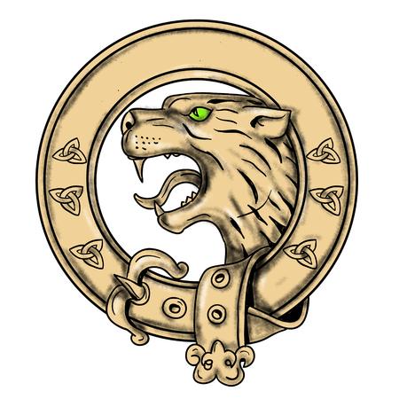 스코틀랜드 와일드 캣, 고양이 속 silvestris grampia 또는 고원의 문신 스타일 그림 순환 원형 안에 집합 호랑이 호랑이 격리 된 배경에 버클 켈트 벨트.