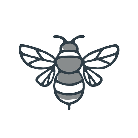Mono line icon style illustration of a bumblebee or bumble bee, a member of the genus Bombus, part of Apidae on isolated white background. Zdjęcie Seryjne - 85640891