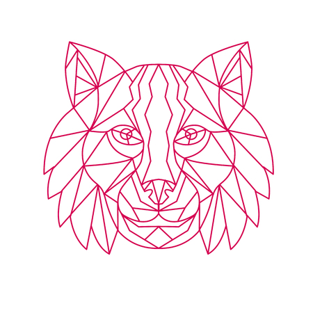 Mono line illustration of a Lynx Bobcat, medium-sized wild cat, head viewed from front on isolated background.