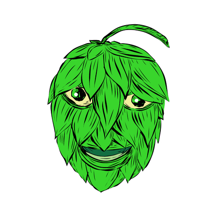 Drawing sketch style illustration of a Hops Man or green man smiling viewed from front on isolated background.